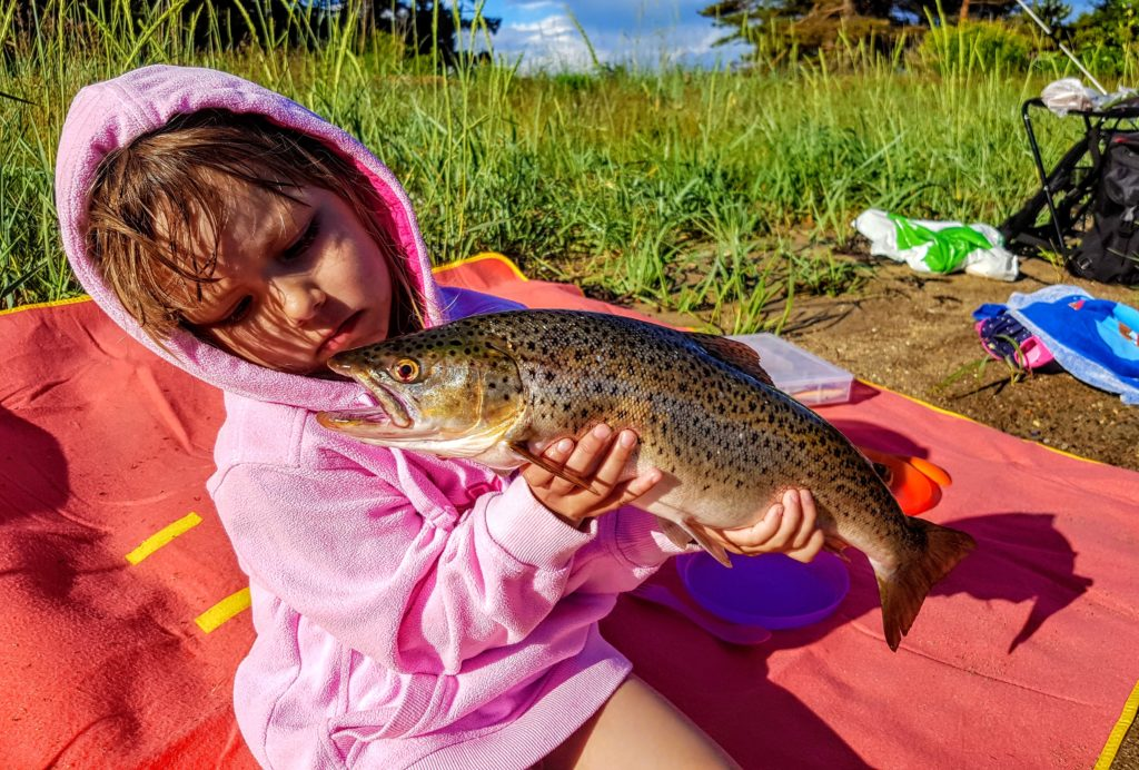 Det å fiske sjøørret om sommeren kan gi virkelig flotte opplevelser!